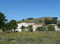 HOSPEDER�A RURAL THE OLIVE TREE GUEST HOUSE